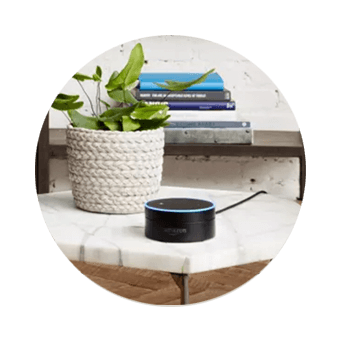 DISH Hands Free TV - Control Your TV with Amazon Alexa - BAY CITY, TX - The WIRELESS STORE - DISH Authorized Retailer